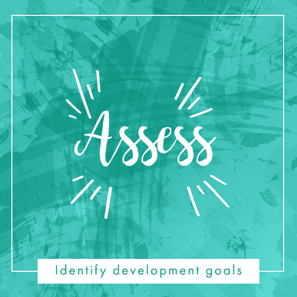 assess development goals